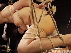 Asian bondage slave tied up and played with like a piece of meat tube porn video