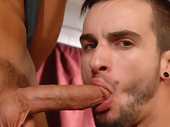 Phenix Saint & Rocco Reed in Get Used To It Video tube porn video