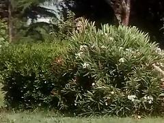 Gli Amori Bestiali Di Luana (1990) tube porn video