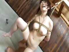 extra hot mongolian bondage tube porn video
