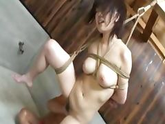 extra hot chinese bondage tube porn video