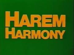 classic vintage .....harem harmony tube porn video