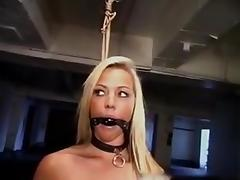 Robyn Truelove gets bound, gagged, whipped and deep throated tube porn video