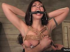 Hard breast bondage and a wild doggy style for Satine tube porn video
