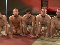 Number of dudes are slaved and fucked by gay masters tube porn video